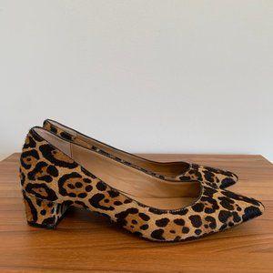 Calvin Klein Shoes - Calvin Klein Leopard Print Genoveva Pumps